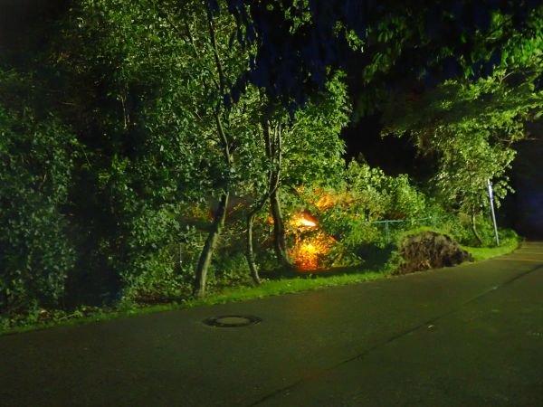 Brandeinsatz vom 08.07.2017  |  (C) Feuerwehr Bad Reichenhall (2017)