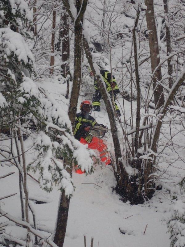 Technische Hilfeleistung vom 09.01.2019  |  (C) Feuerwehr Bad Reichenhall (2019)