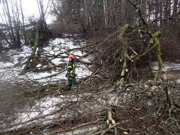 Technische Hilfeleistung vom 14.01.2019  |  (C) Feuerwehr Bad Reichenhall (2019)