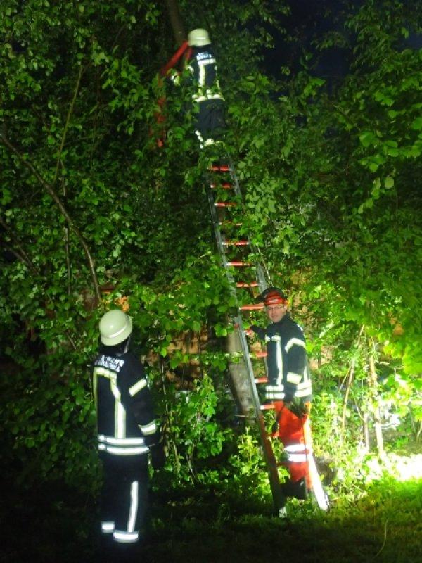Technische Hilfeleistung vom 02.05.2020     (C) Feuerwehr Bad Reichenhall (2020)